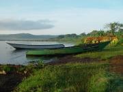 22-Classic-Uganda-tourist-pic-Boats-on-shore-of-Lake-Victoria