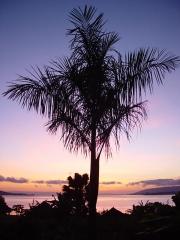 22-Classic-Uganda-tourist-pic-Sunrise-over-Lake-Victoria